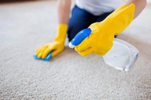 Vacate-Cleaners-Carpet-Cleaning